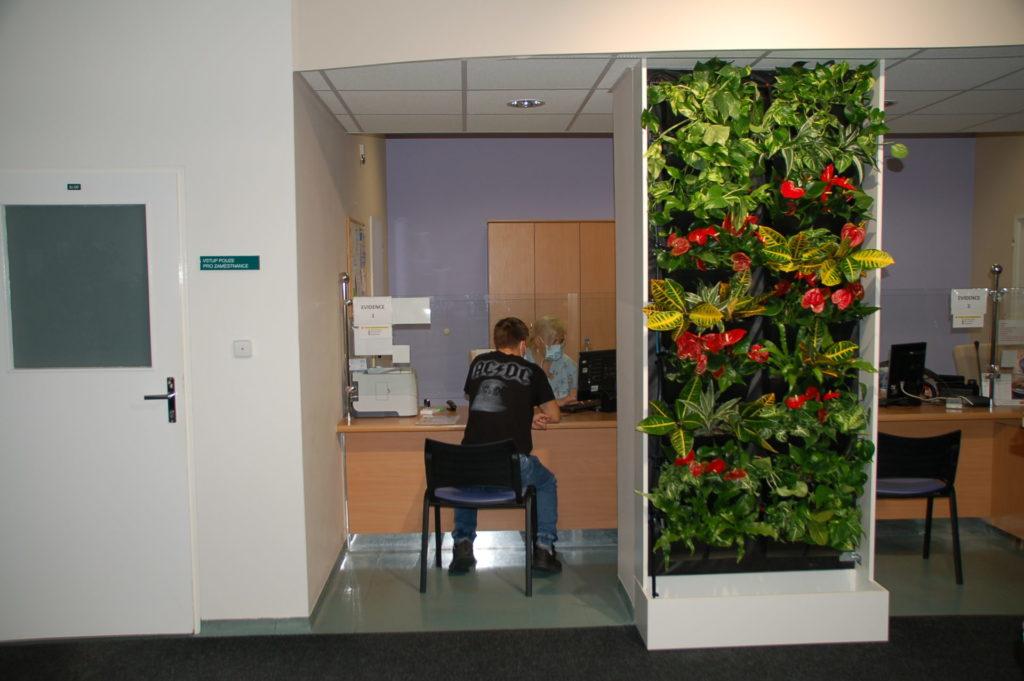 Menší zelená vertikální stěna s rostlinami v administrativní budově