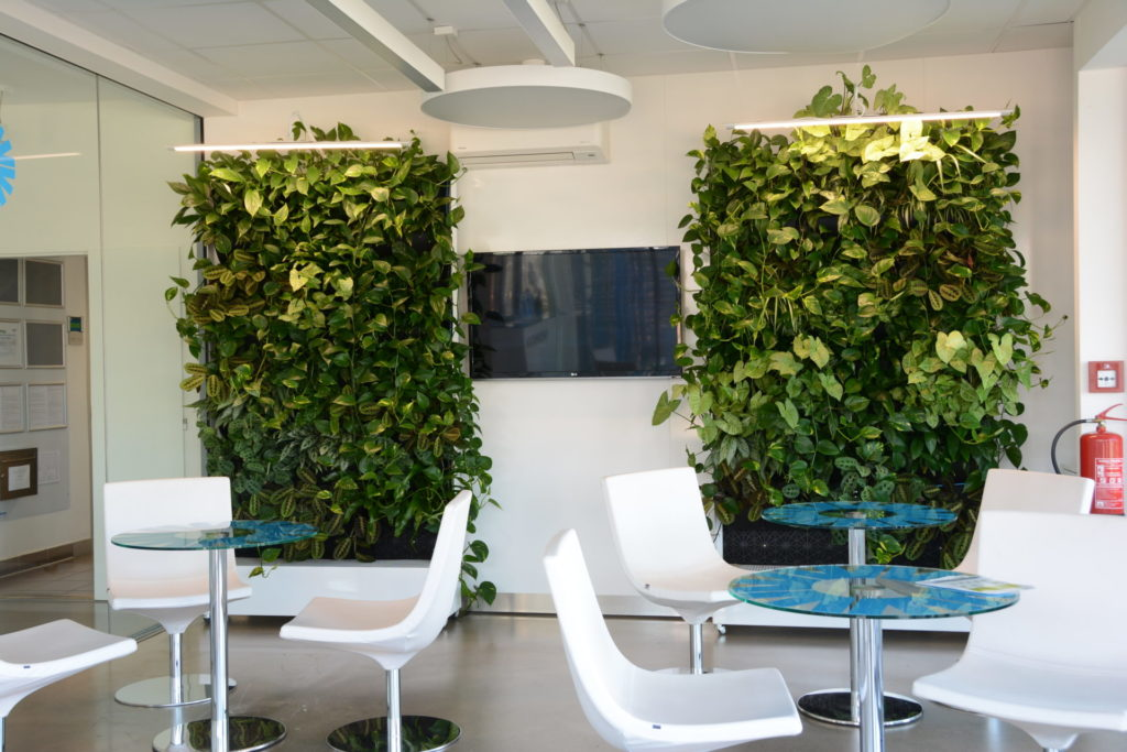 Dvě vertikální zelené stěny realizované firmou Greenvia