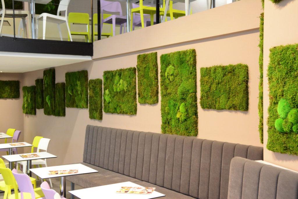 Mechové obrazy jako přírodní dekorace v budově
