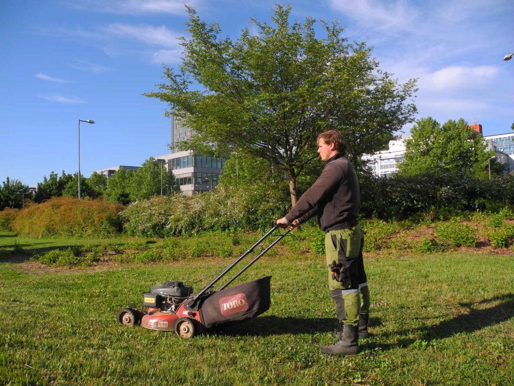 Profesionální sekání trávníku zahradní sekačkou