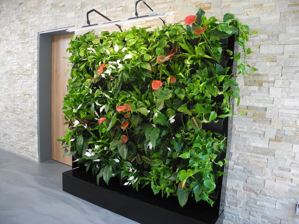 Elegantní zelená stěna v interiéru budovy