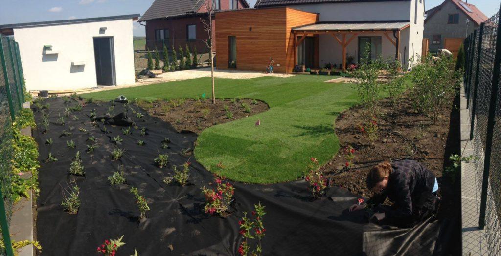 Realizace zahrady u rodinného domu firmou Greenvia