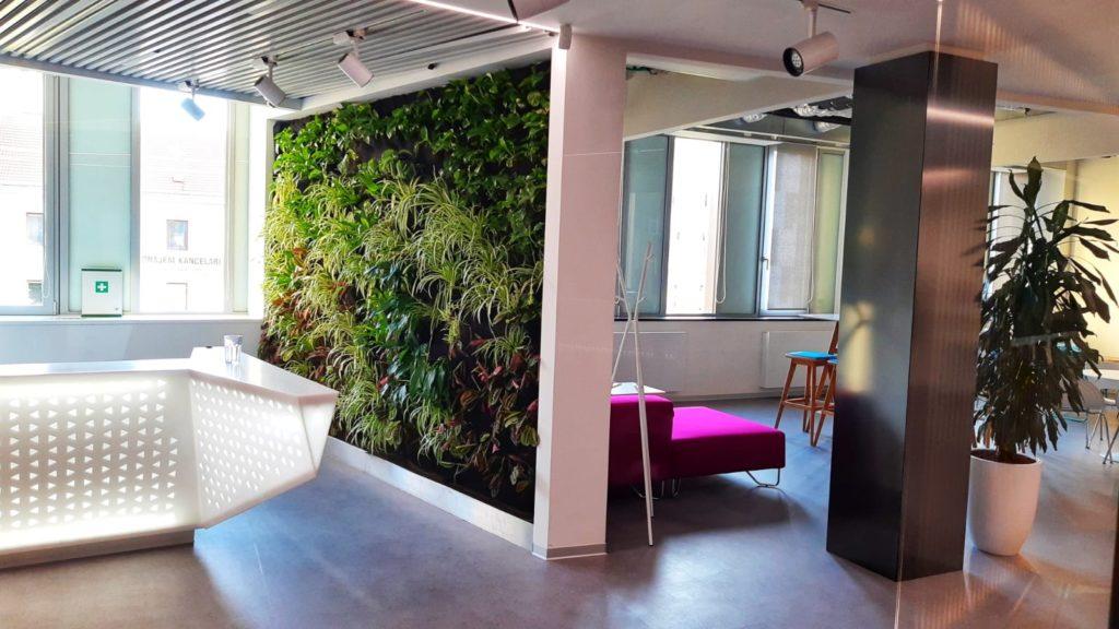 Příklad realizace vertikální zelené stěny firmou Greenvia