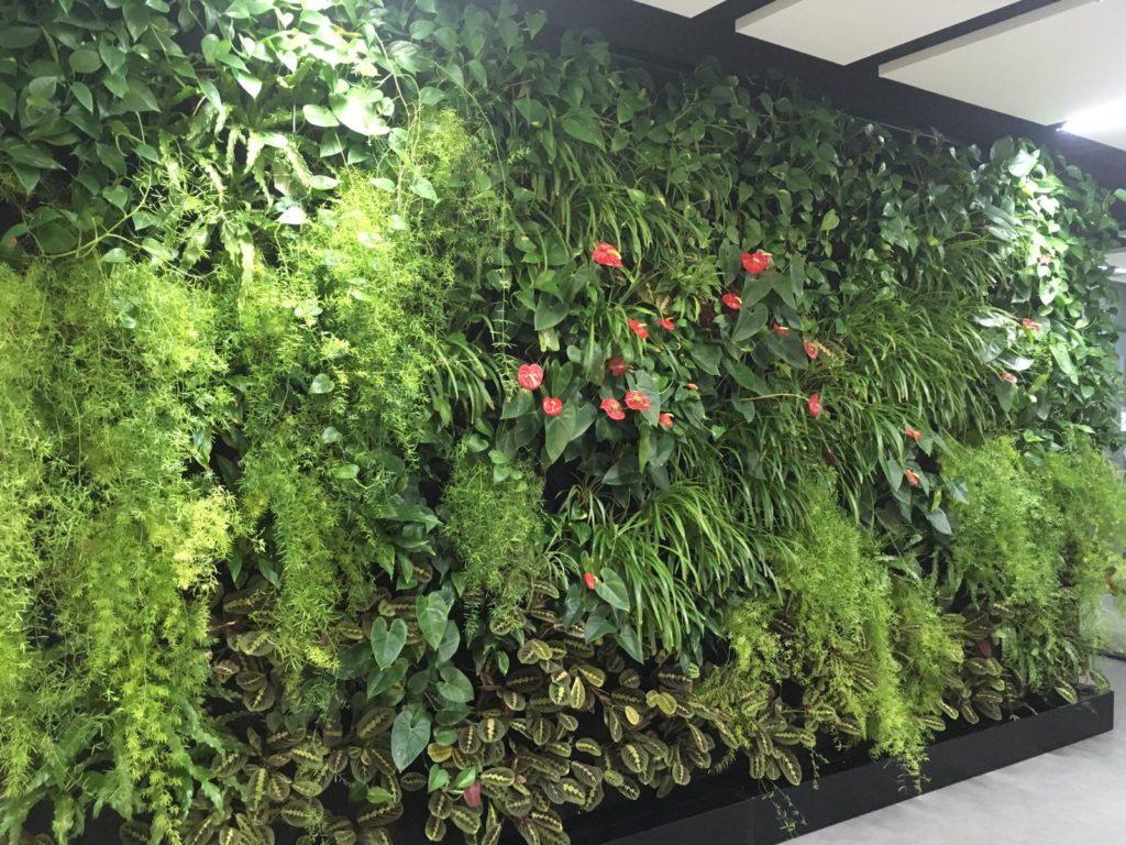 Velká vertikální zahrada - stěna realizovaná firmou Greenvia